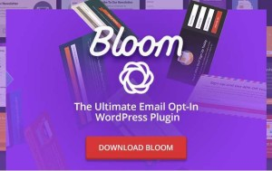 Bloom WordPress plugin