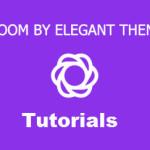 How To Install bloom WordPress Plugin