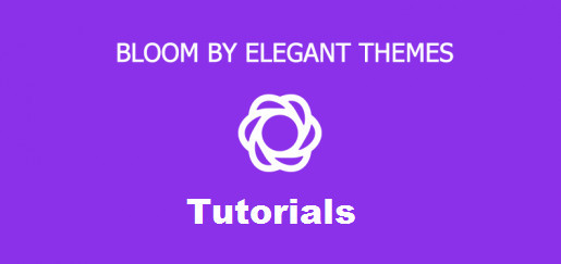 How To Install bloom WordPress Plugin