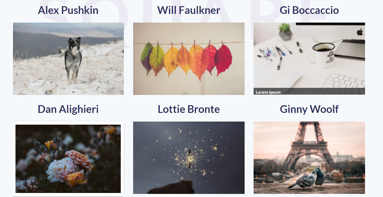 Best Gallery Plugins for Photography Websites To Display Your Fabulous Work Online 2
